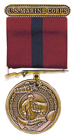 IMAGE of WWII medal